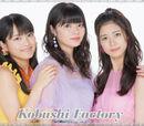 Kobushi Factory Concerts