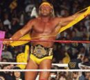 Hulk Hogan/Gallery