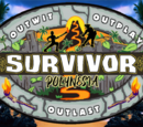 Survivor ORG 38: Polynesia