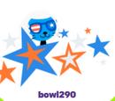 Bowl290