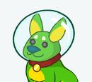 Спутник «Корги-космонавт»