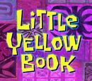 Little Yellow Book/transcript