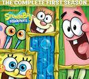 Temporadas en DVD