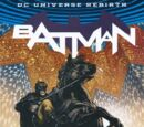 Batman Rules of Engagement TPB