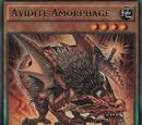 Avidité Amorphage