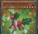 Cheval Radis Potartiste