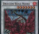 Dragon Rose Noire