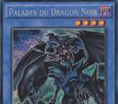 Paladin du Dragon Noir