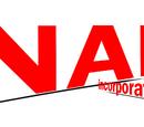 NAP Inc.