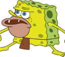 Primitive Sponge