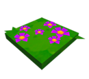Chemin de fleurs roses