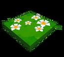Chemin de fleurs blanches