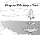 Chapter 338