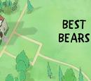Best Bears