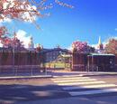 Anteros Academy