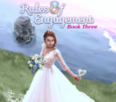 Rules of Engagement, Book 3 Choices