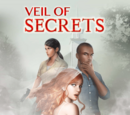 Veil of Secrets Choices