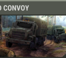 Destroyed convoy