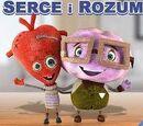 Serce i Rozum (gra)