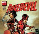 Daredevil Annual Vol 5 1