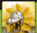 Whirlweed