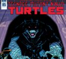 Teenage Mutant Ninja Turtles issue 85 (IDW)
