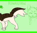 Rowanpaw