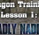Dragon Training Lessons