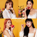 MAMAMOO Décalcomanie type C cover art.png