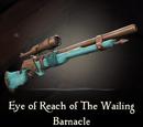 Eye of Reach of The Wailing Barnacle