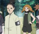 Team 10 (Moegi)