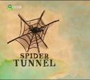 Spider Tunnel