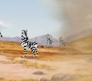 Thurston/Gallery/The Zebra Mastermind
