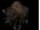Bisonte americano.png