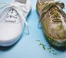 DemonaCarrolltucky/Shoe Cleaning