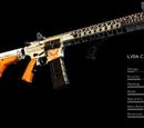 LVOA-C Division