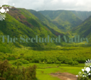 The Secluded Valley