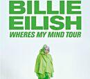 Where's My Mind Tour