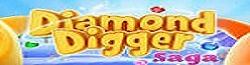 Diamond Digger Saga Wiki