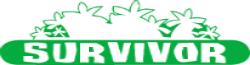 BigBruv's Survivor Wiki
